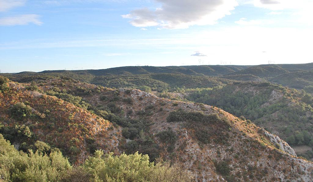 parc naturel de Saint Victor la Coste