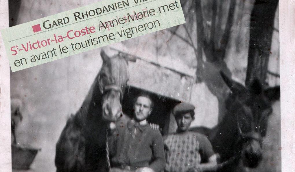 Aimé et Eugène préparent les mules