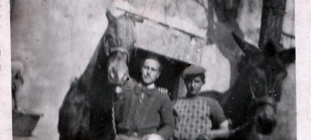 Aimé & Eugène préparent les mules pour la vendange